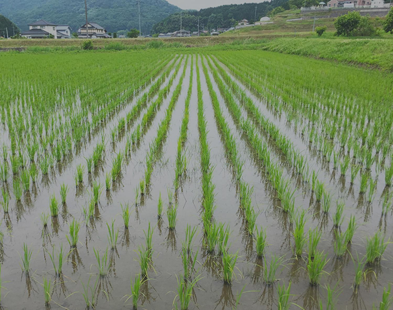 男性3人の笑顔の写真